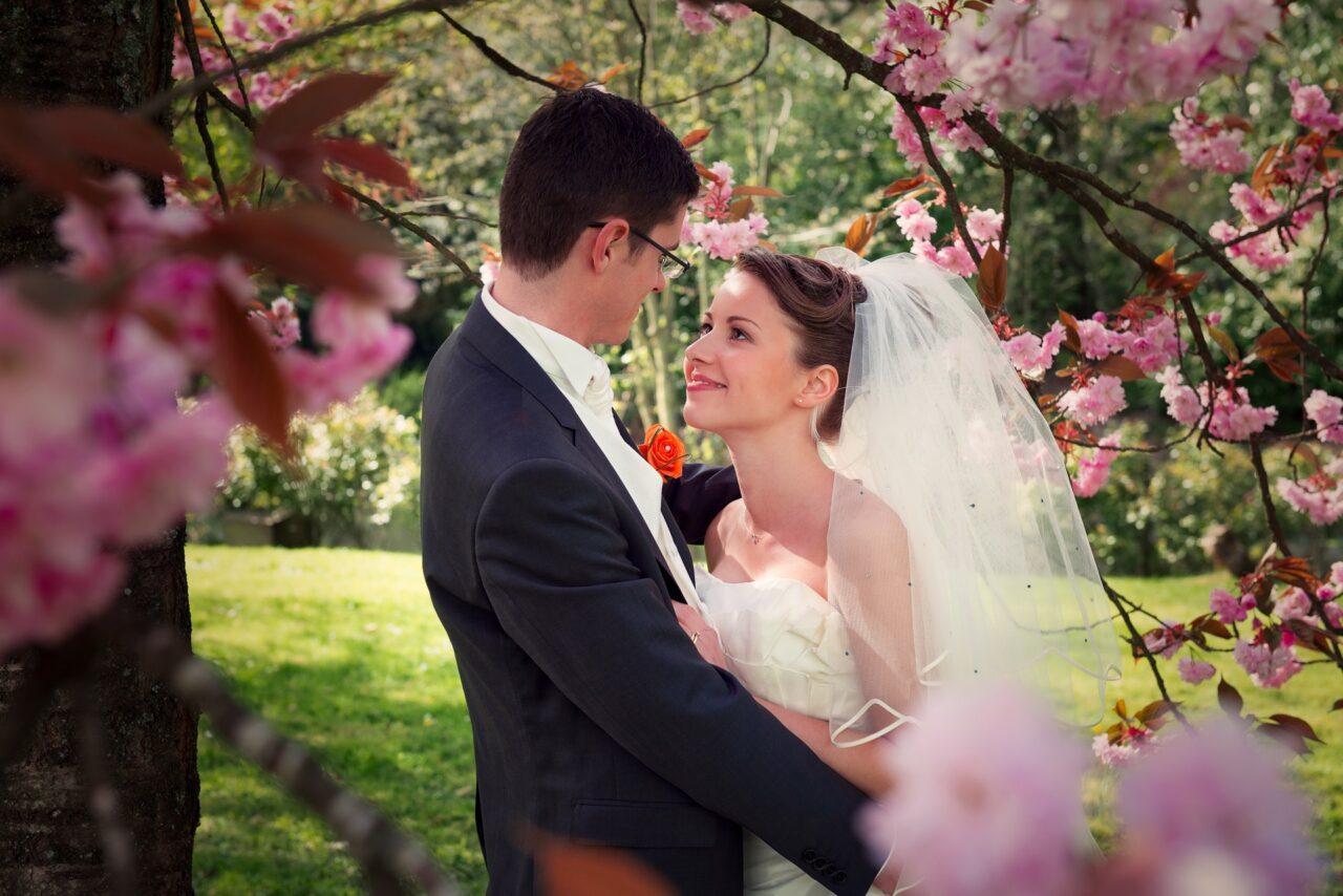 Couple de mariés sous un cerisier en fleur