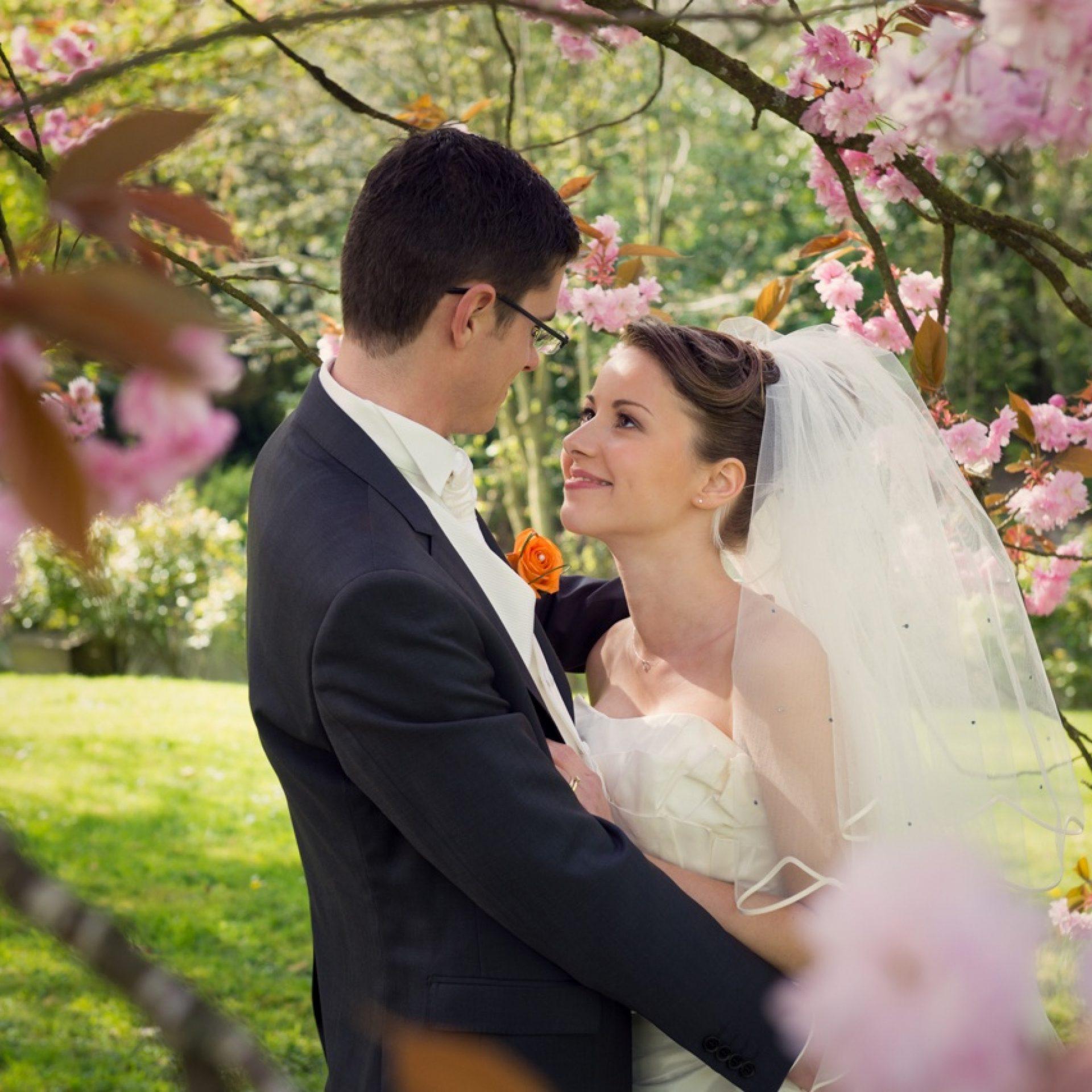 complicité de couple sous un cerisier